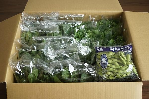 岐阜の有名な野菜といえば・・・_d0269651_22420617.jpg