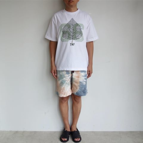 THE NORTH FACE PURPLE LABEL : 5.5oz Graphic H/S Tee_a0234452_11512323.jpg