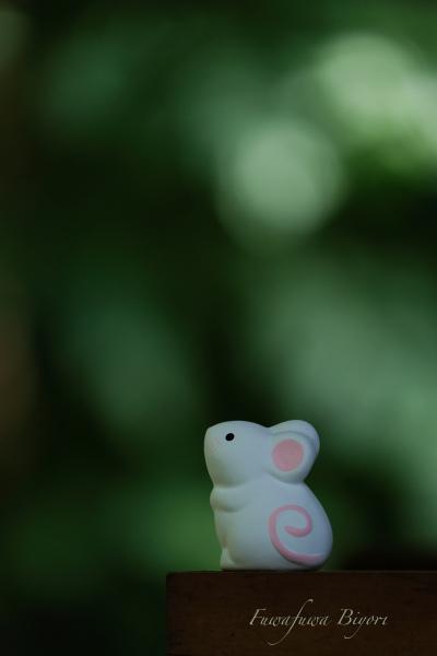 京都で出会った動物たち **_d0344864_19554229.jpg