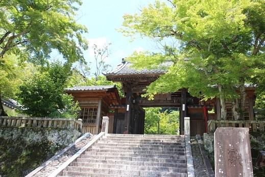 涼を求めて修善寺へ。_b0016474_09342567.jpg