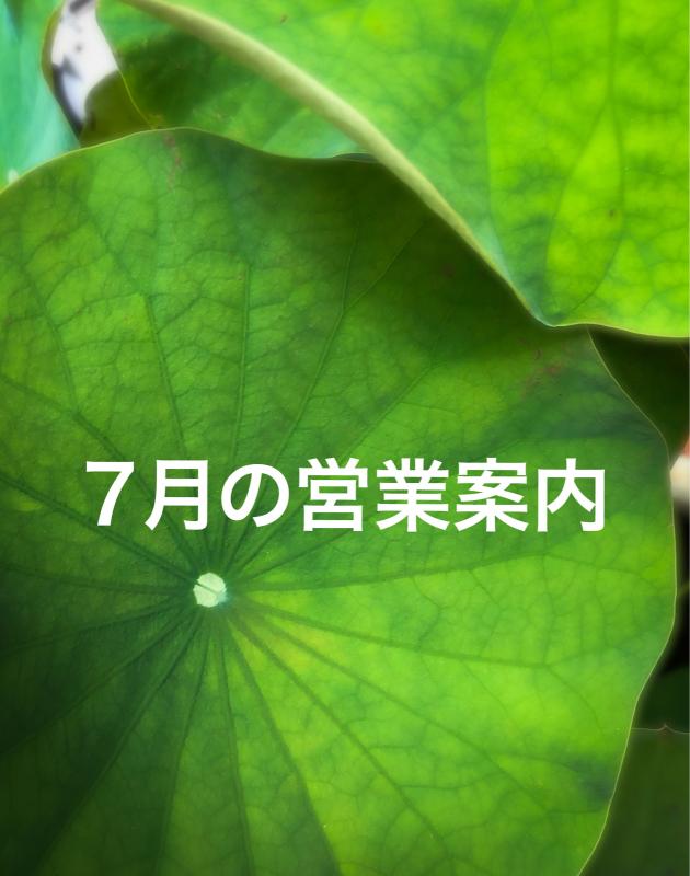 【2020年7月の営業】_b0176381_15522098.jpg