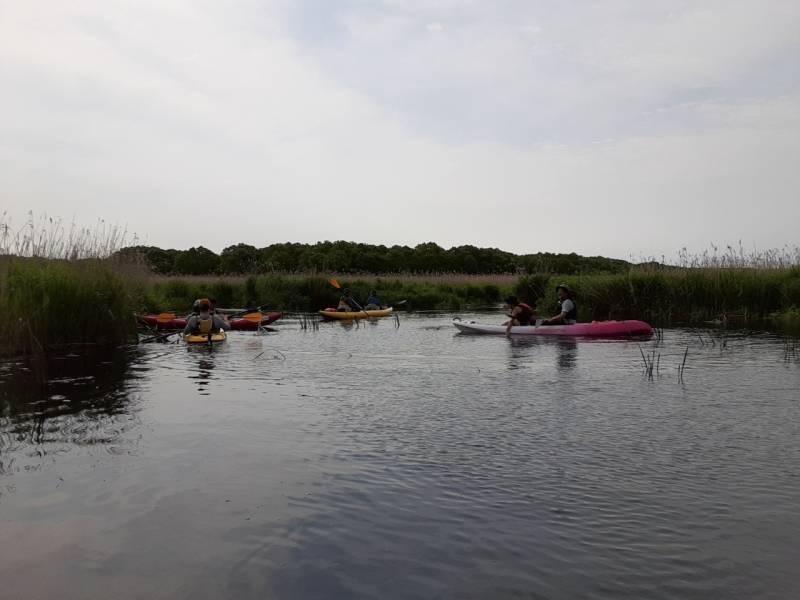 美々川をカヌーでのんびり下ってきました!_d0198793_01095955.jpg