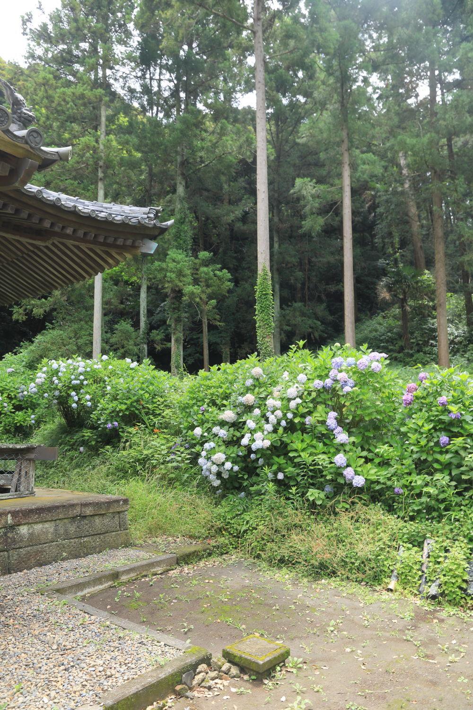神社までお散歩♪_b0275998_12231421.jpg