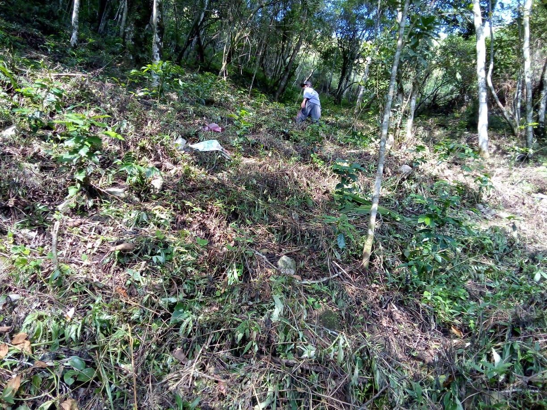 キブンガン郡でのアグロフォレストリーによる植林と生態系調査プロジェクト終了しました!_b0128901_16192873.jpg