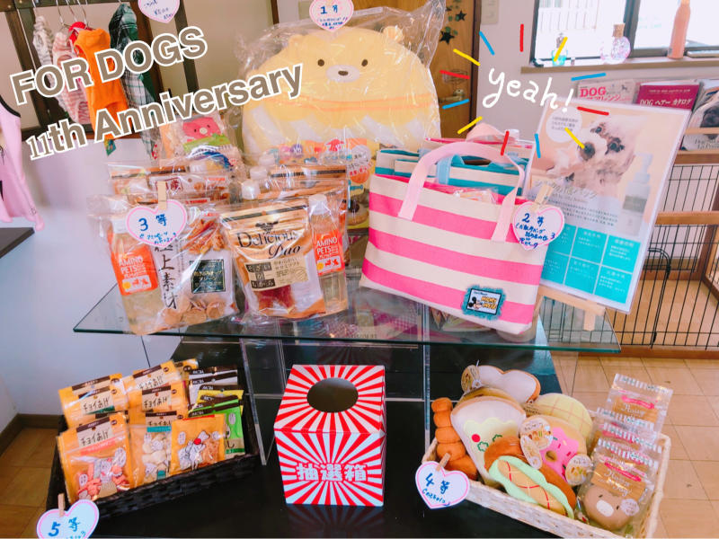 11th Anniversary!!_a0392514_15010783.jpg