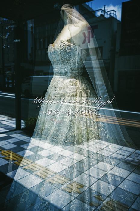 6月の花嫁。_f0235723_20025561.jpg