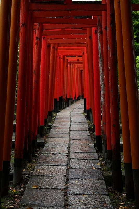 根津神社 byLUMIX 20-60mm_f0050534_15315748.jpg