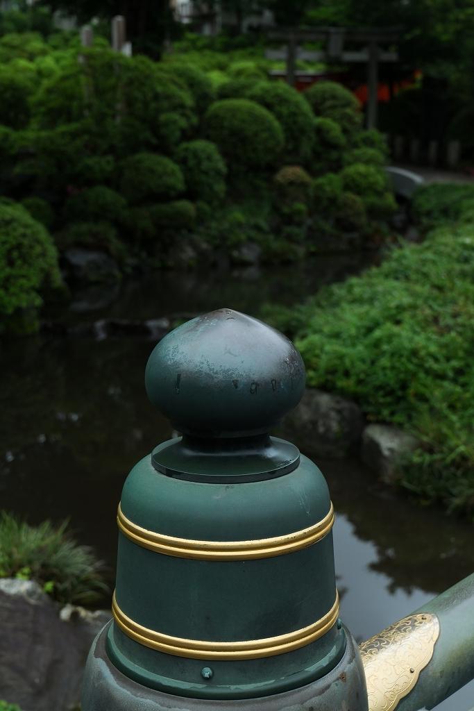 根津神社 byLUMIX 20-60mm_f0050534_15315793.jpg