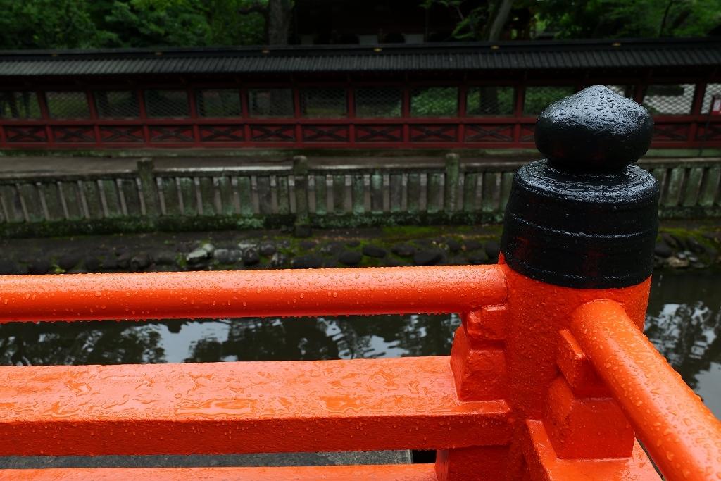 根津神社 byLUMIX 20-60mm_f0050534_15320014.jpg