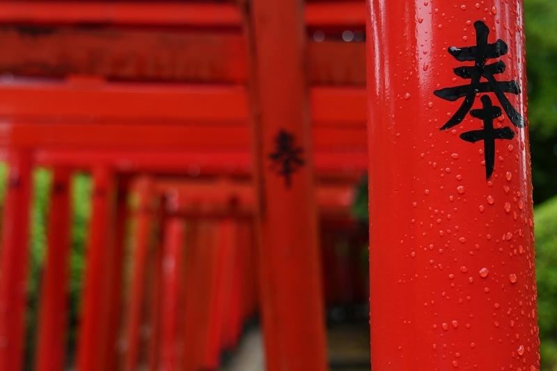根津神社 byLUMIX 20-60mm_f0050534_15320183.jpg
