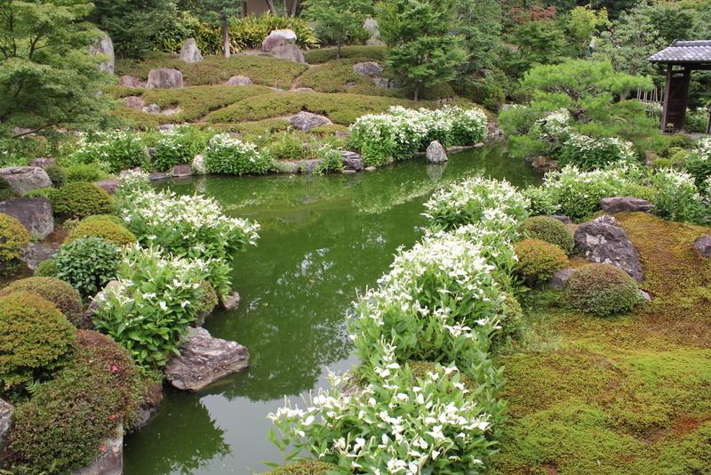 京都が日本人の元に戻って来た_f0053342_20292053.jpg