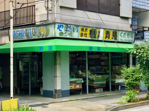 のんびり、なにを狙うでもなく、古き良き東京下町の風景を残す街を散歩する。_d0057843_18551346.jpeg