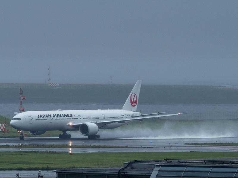 雨の羽田空港_a0003650_22574006.jpg