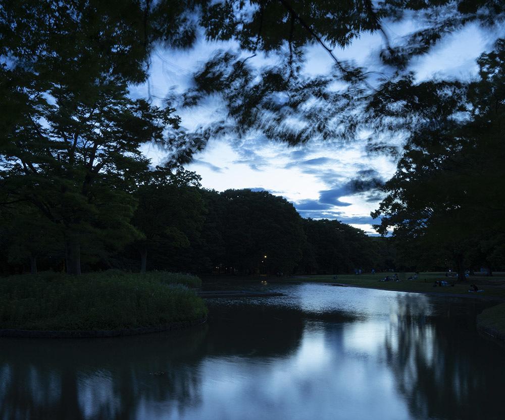 代々木公園_e0194450_18002432.jpg