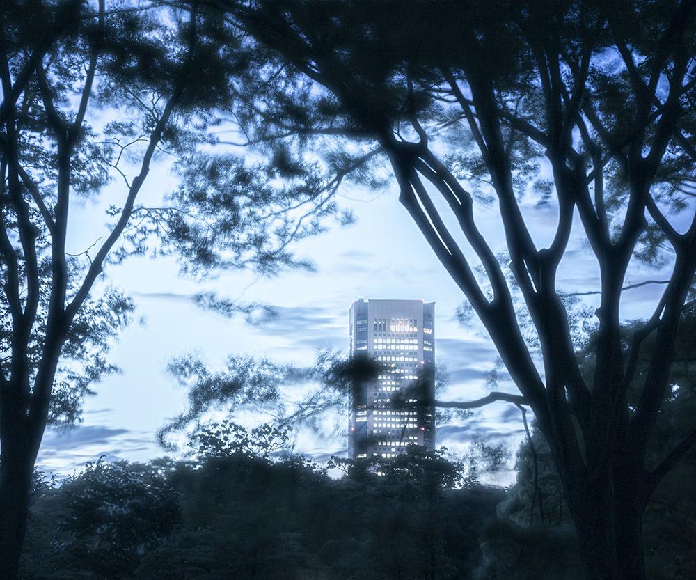 代々木公園_e0194450_18002480.jpg