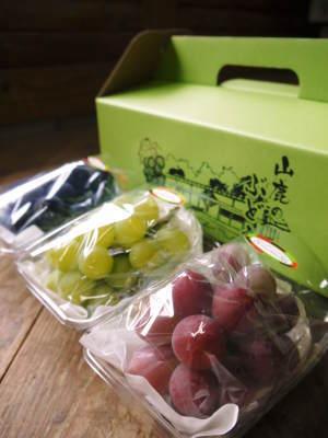 熊本ぶどう 社方園 今年(令和2年)は1粒1粒の充実がすごい!最高級種なしぶどうをお中元やギフトにぜひ!_a0254656_16162621.jpg