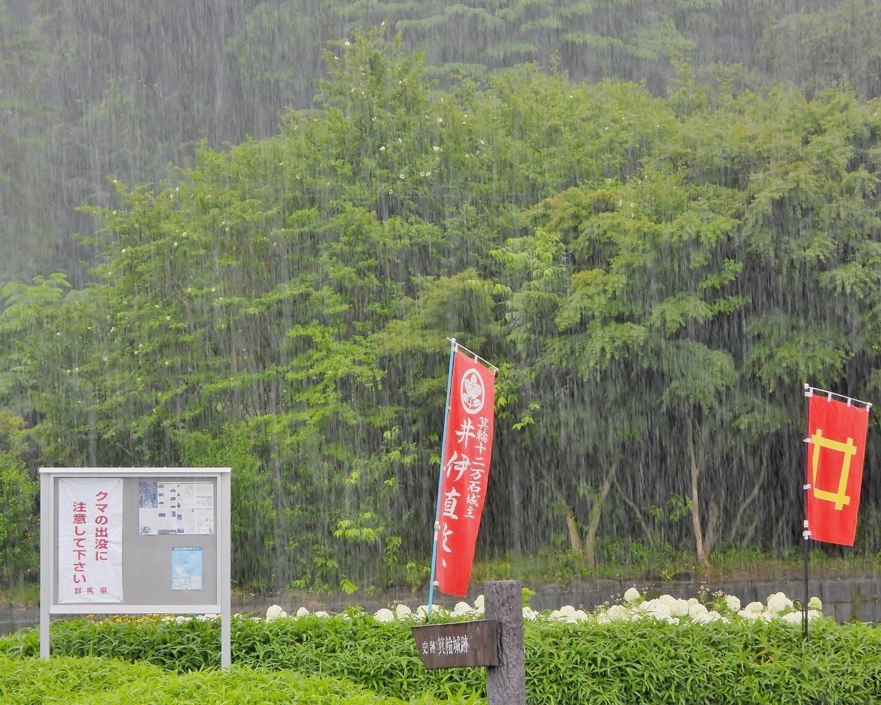 箕輪城跡で 通り雨と雨上がり_c0305565_17274420.jpg