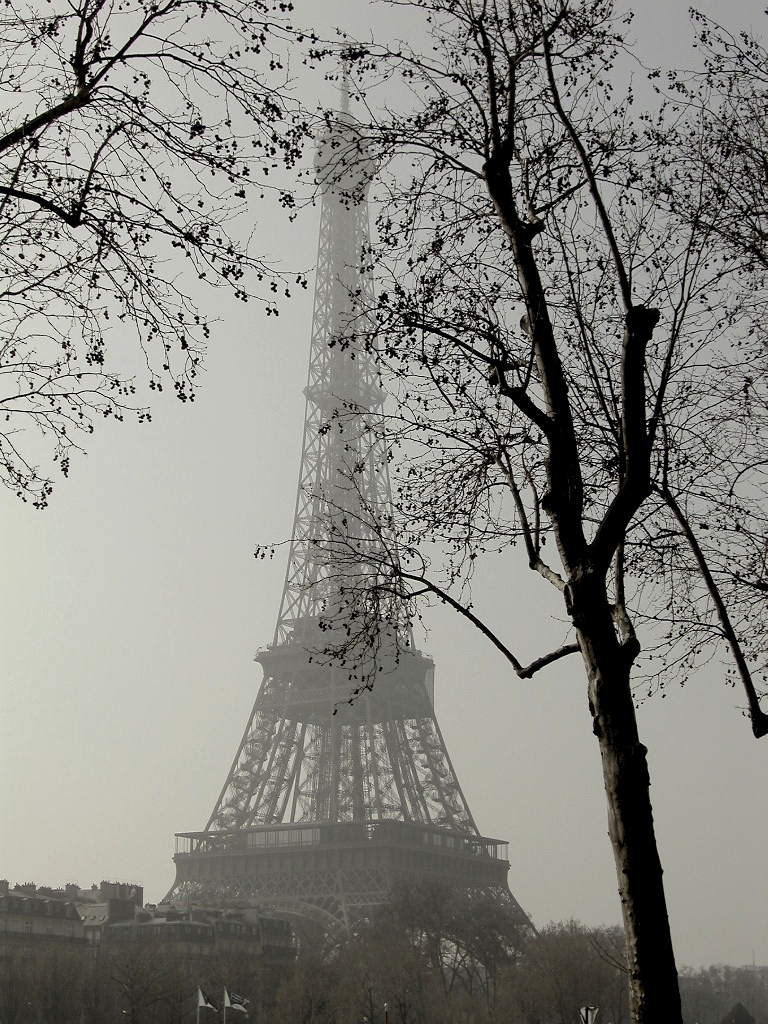 memories vol.1 - Paris & Bruxelles -_d0349265_13492028.jpg