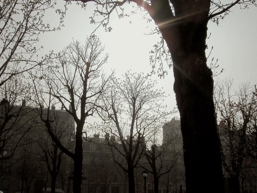 memories vol.1 - Paris & Bruxelles -_d0349265_13493347.jpg