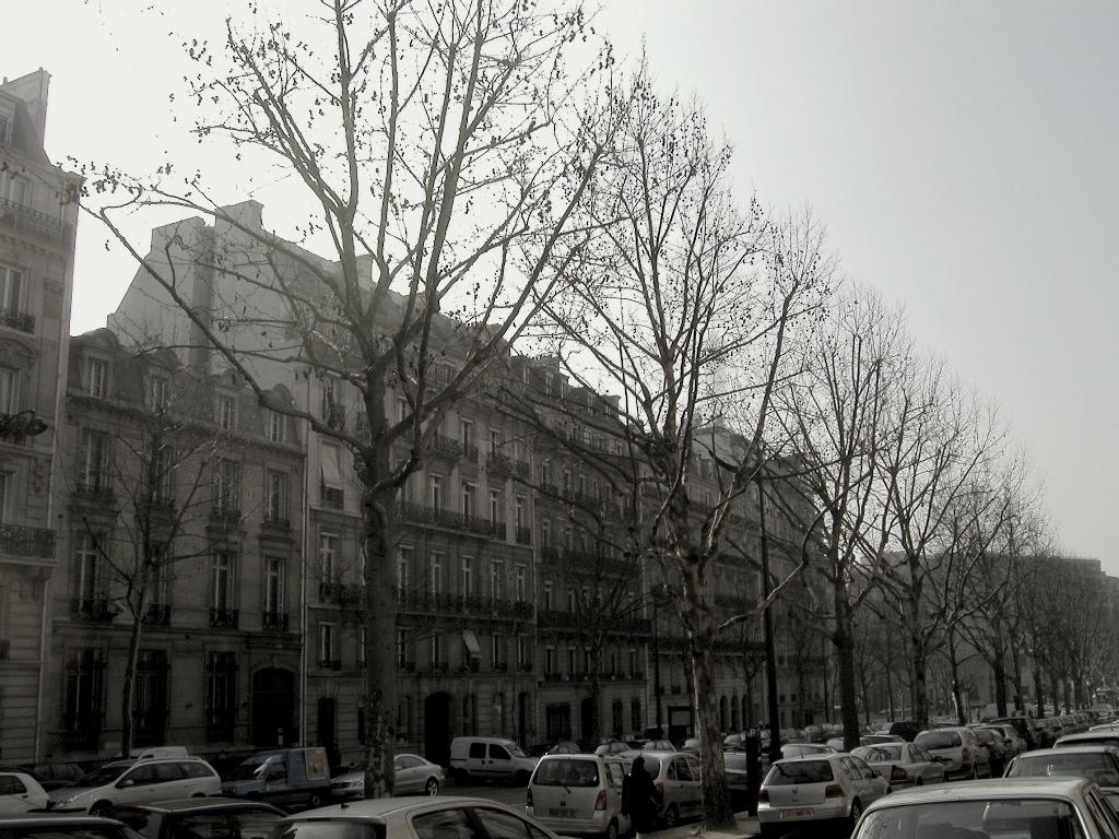 memories vol.1 - Paris & Bruxelles -_d0349265_13493792.jpg