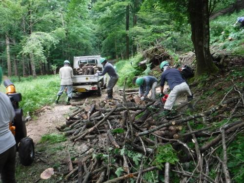 6/27 未来の森づくり 開催しました!_f0212679_15503864.jpg