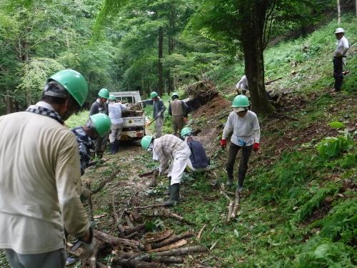 6/27 未来の森づくり 開催しました!_f0212679_15504305.jpg