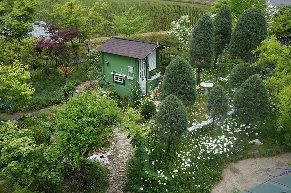 赤ずきんのおばあさんのお家、壁塗り_e0365880_20393626.jpg