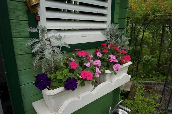赤ずきんのおばあさんのお家、壁塗り_e0365880_20395994.jpg