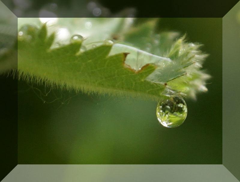 水滴_d0162994_09223701.jpg