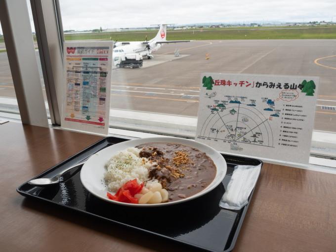 北海道エアシステムの新機材ATR42に乗って・・函館へ(1)_f0276498_13110119.jpg