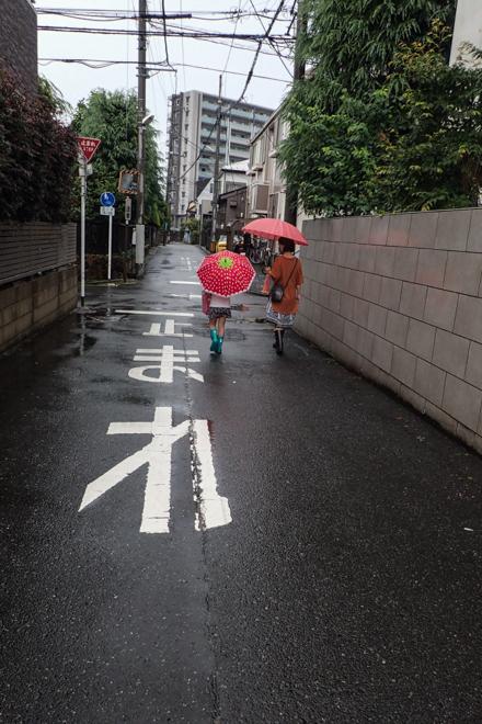 06.30 雨降り_a0390712_17281193.jpg