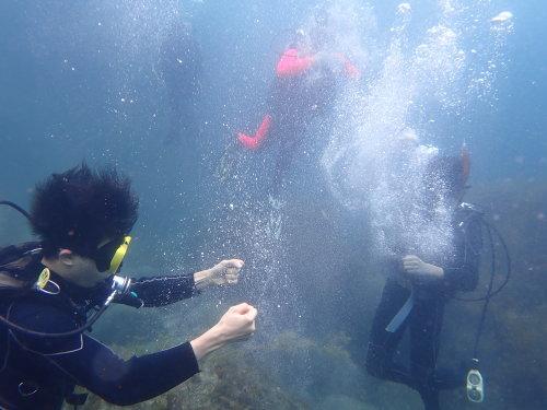 クラゲはバブルリングで撃退!!_d0070216_16520928.jpg