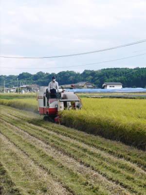 七城米 長尾農園 令和2年度の田植えの様子を現地取材!今年も美しすぎる田んぼなんです!_a0254656_17341772.jpg