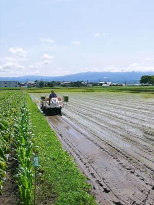 七城米 長尾農園 令和2年度の田植えの様子を現地取材!今年も美しすぎる田んぼなんです!_a0254656_17502288.jpg