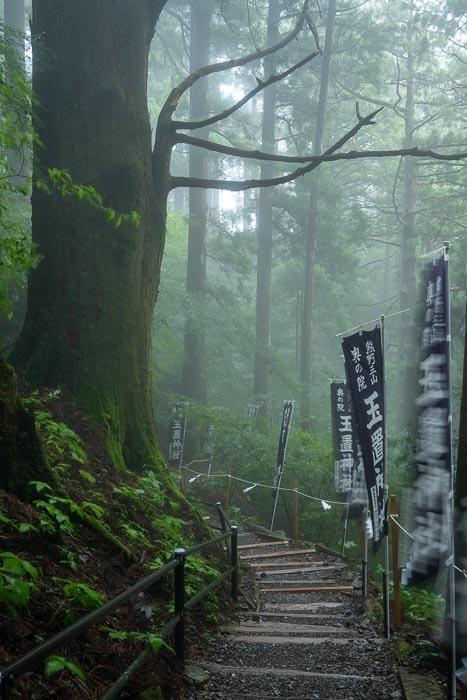 十津川3(玉置山)_e0092186_13301246.jpg
