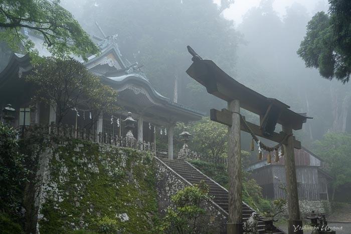 十津川3(玉置山)_e0092186_13314691.jpg