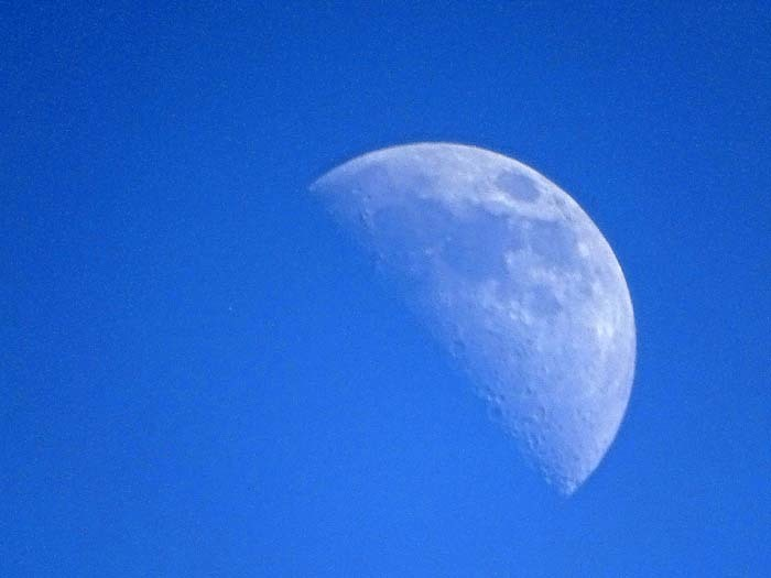 上弦の半月_e0016894_18210495.jpg