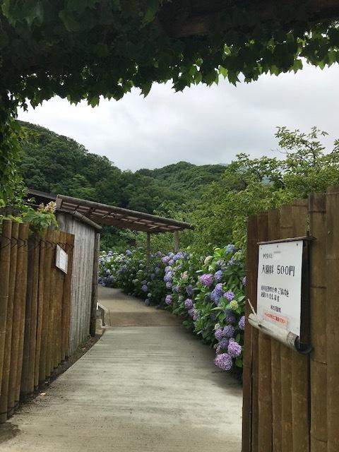 あわじ花山水_f0204295_16124953.jpg