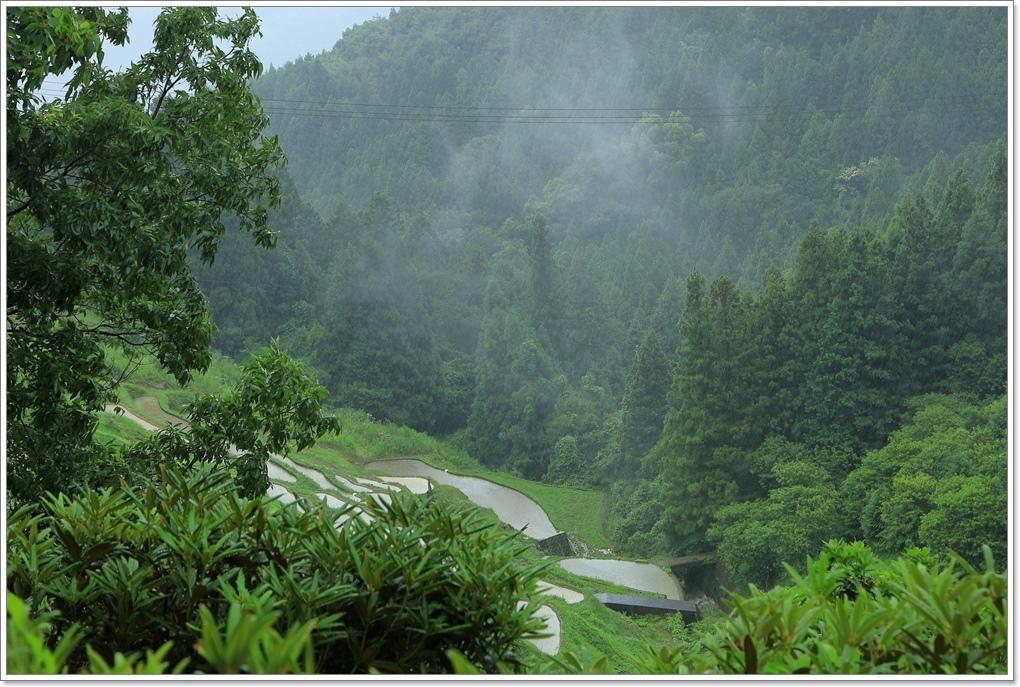 内子町 雨の泉谷棚田_a0057905_15565693.jpg