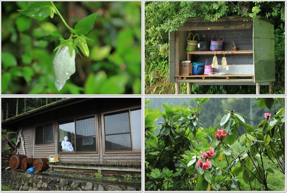 内子町 雨の泉谷棚田_a0057905_15594320.jpg