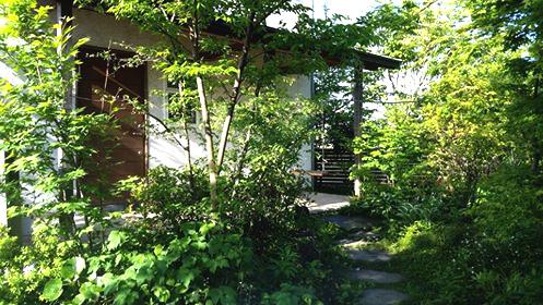庭づくり | 庭木の成長ビフォーアフター_d0080906_05363440.jpg