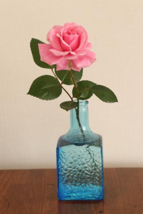 季節を飾った花々 & 器_d0150720_16415336.jpg