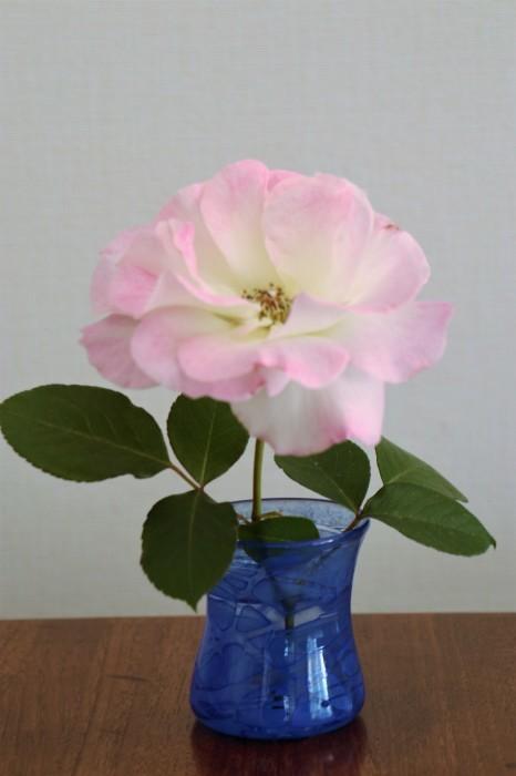 季節を飾った花々 & 器_d0150720_16420861.jpg