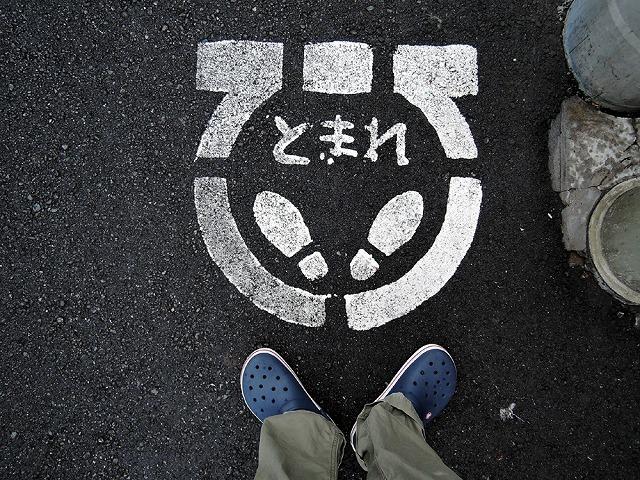 散歩屋日誌【番外編】_c0062832_15582265.jpg