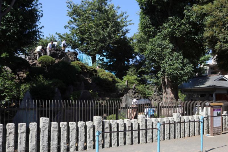 令和2年7月1日のお山開きの日に登れる富士塚は?_c0060143_14315689.jpg