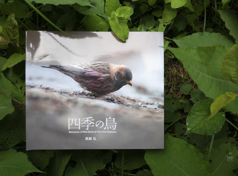 blurbのphoto bookを試す_c0042548_10195667.jpg
