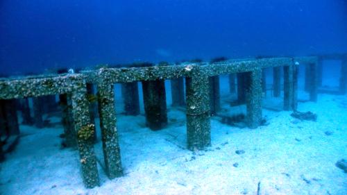 ファンダイブでアンダマン海を満喫(^^)_f0144385_15244452.jpg