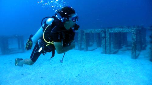 ファンダイブでアンダマン海を満喫(^^)_f0144385_15244616.jpg
