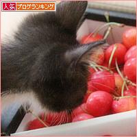 子猫と赤い宝石_a0389088_05494311.jpg