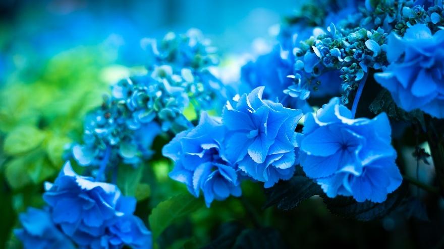 青く染まる名古屋駅_d0353489_22310478.jpg
